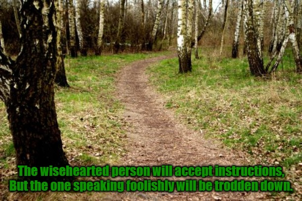 Accept Instruction |  The wisehearted person will accept instructions, But the one speaking foolishly will be trodden down. | image tagged in wise,heart,instruct,instruction,foolish,trodden | made w/ Imgflip meme maker
