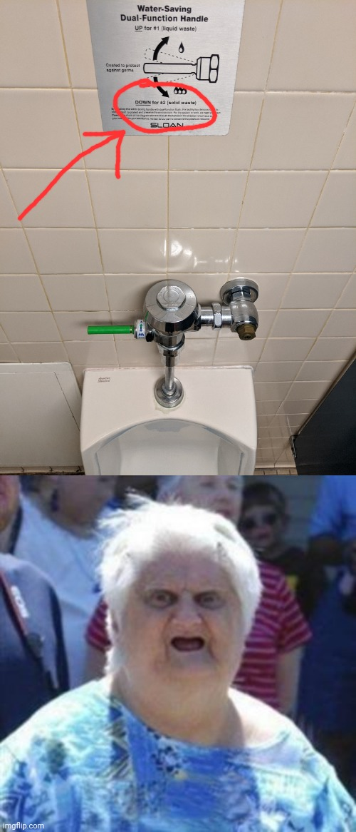 They installed this special green handle for covid | image tagged in wat lady,covid-19,coronavirus,urinal | made w/ Imgflip meme maker