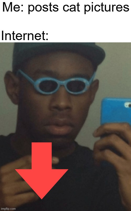 Man posting cat pictures in 2020 seriously? |  Me: posts cat pictures; Internet: | image tagged in tyler the creator | made w/ Imgflip meme maker