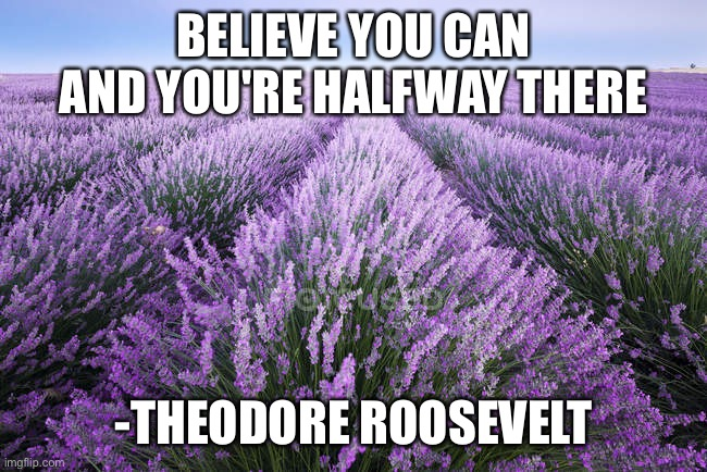 BELIEVE YOU CAN AND YOU'RE HALFWAY THERE; -THEODORE ROOSEVELT | image tagged in memes,motivational | made w/ Imgflip meme maker