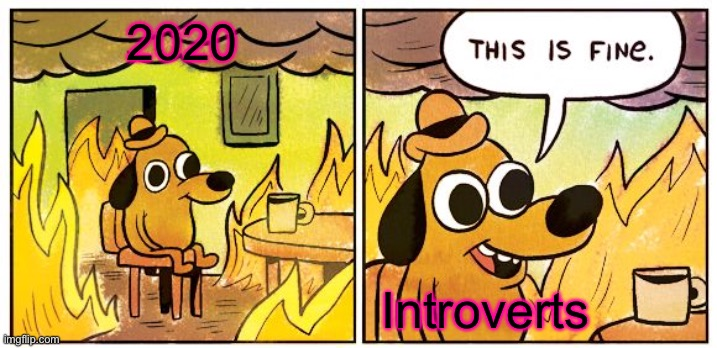 This Is Fine |  2020; Introverts | image tagged in memes,this is fine | made w/ Imgflip meme maker
