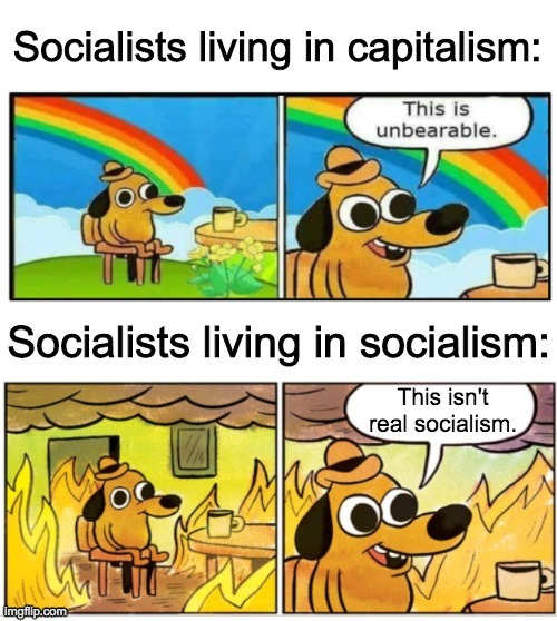 This is fine | image tagged in this is fine,funny,memes,politics,libertarian | made w/ Imgflip meme maker
