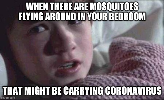 Those insects are known to carry illnesses like malaria, West Nile virus, yellow fever, and Zika. Why not COVID-19, as well? |  WHEN THERE ARE MOSQUITOES FLYING AROUND IN YOUR BEDROOM; THAT MIGHT BE CARRYING CORONAVIRUS | image tagged in memes,i see dead people,mosquito,mosquitoes,coronavirus,covid-19 | made w/ Imgflip meme maker