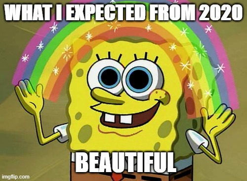 2020 expectation |  WHAT I EXPECTED FROM 2020; BEAUTIFUL | image tagged in memes,imagination spongebob | made w/ Imgflip meme maker