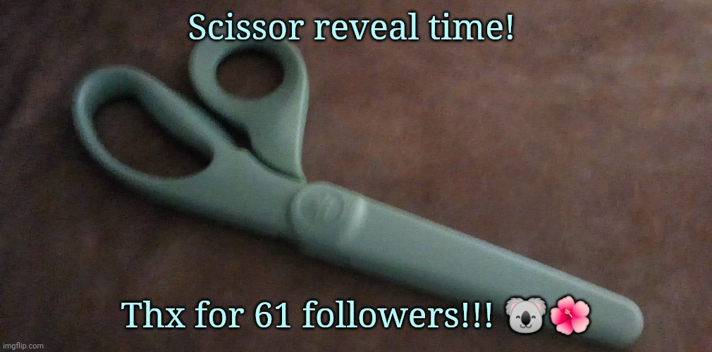 Yez |  Scissor reveal time! Thx for 61 followers!!! 🐨🌺 | made w/ Imgflip meme maker