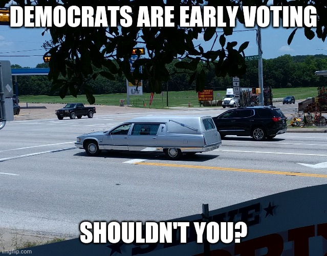 Only you can prevent liberal politics |  DEMOCRATS ARE EARLY VOTING; SHOULDN'T YOU? | image tagged in democrat party | made w/ Imgflip meme maker