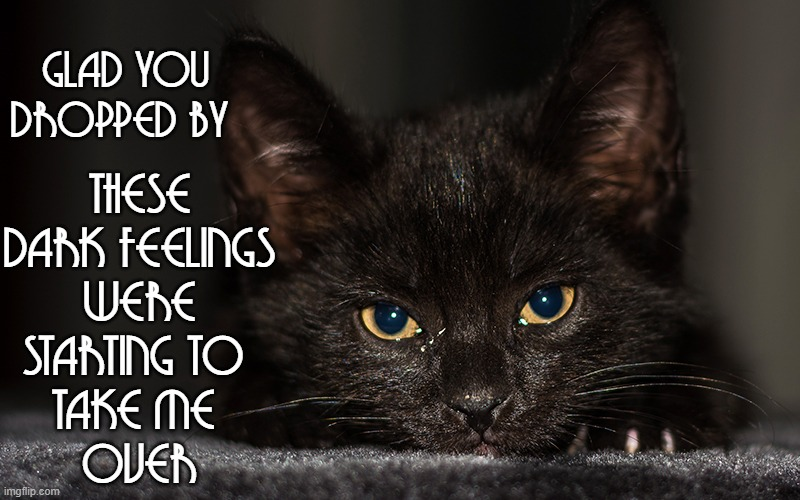 Black Cat Thoughts |  THESE DARK FEELINGS WERE STARTING TO  TAKE ME  OVER; GLAD YOU DROPPED BY | image tagged in vince vance,cats,black cat,darkness,the dark side,funny cat memes | made w/ Imgflip meme maker
