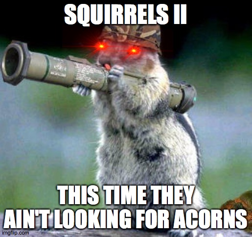 The next new horror film |  SQUIRRELS II; THIS TIME THEY AIN'T LOOKING FOR ACORNS | image tagged in memes,bazooka squirrel | made w/ Imgflip meme maker