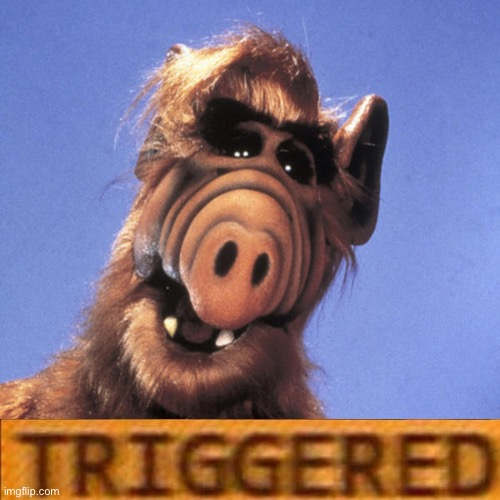 Alf  | image tagged in alf | made w/ Imgflip meme maker