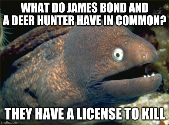You probably could've gotten it already. |  WHAT DO JAMES BOND AND A DEER HUNTER HAVE IN COMMON? THEY HAVE A LICENSE TO KILL | image tagged in memes,bad joke eel,james bond,007,lol | made w/ Imgflip meme maker