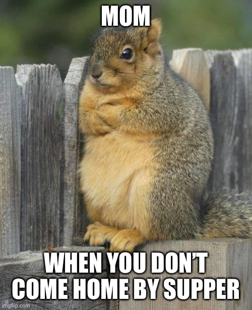 """Be Home By Supper Time!"" 