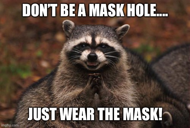 raccon |  DON'T BE A MASK HOLE.... JUST WEAR THE MASK! | image tagged in raccon | made w/ Imgflip meme maker