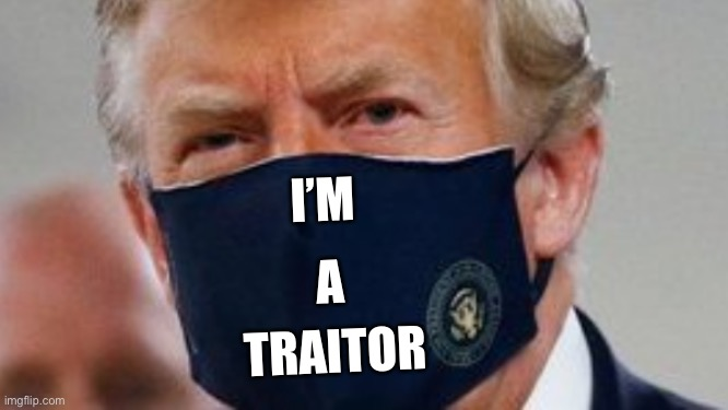 Traitor trump in a mask |  I'M; A; TRAITOR | image tagged in trump in a mask,traitor trump,trump in mask at walter reed,trump in face mask | made w/ Imgflip meme maker