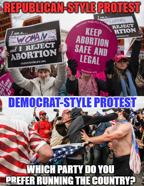 Which Do You Prefer? |  REPUBLICAN-STYLE PROTEST; DEMOCRAT-STYLE PROTEST; WHICH PARTY DO YOU PREFER RUNNING THE COUNTRY? | image tagged in protest,protesters,gop,democrat | made w/ Imgflip meme maker