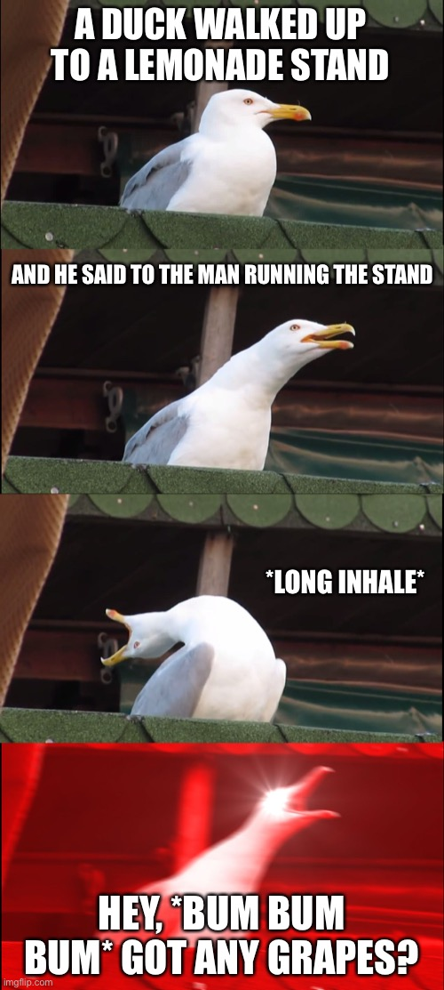Inhaling Seagull Meme |  A DUCK WALKED UP TO A LEMONADE STAND; AND HE SAID TO THE MAN RUNNING THE STAND; *LONG INHALE*; HEY, *BUM BUM BUM* GOT ANY GRAPES? | image tagged in memes,inhaling seagull | made w/ Imgflip meme maker