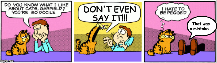 Image Tagged In Garfield Jon Angry Cat Imgflip