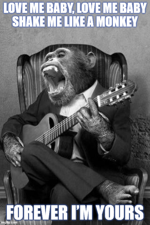 DMB Shake Me Like A Monkey |  LOVE ME BABY, LOVE ME BABY SHAKE ME LIKE A MONKEY; FOREVER I'M YOURS | image tagged in dmb,dave matthews band,chimp,monkey,shake me like a monkey,love | made w/ Imgflip meme maker
