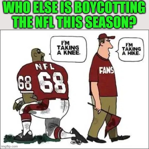 Not For Long is what the NFL stands for now. Multi millionaires babies telling us we are horrible and we give them money. |  WHO ELSE IS BOYCOTTING THE NFL THIS SEASON? | image tagged in political meme,nfl | made w/ Imgflip meme maker