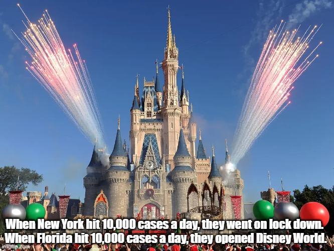 Just How Crazy Are We? |  When New York hit 10,000 cases a day, they went on lock down.  When Florida hit 10,000 cases a day, they opened Disney World. | image tagged in covid,coronavirus,disney world | made w/ Imgflip meme maker