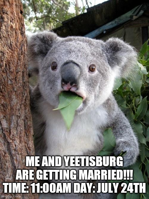 Surprised Koala Meme |  ME AND YEETISBURG ARE GETTING MARRIED!!! TIME: 11:00AM DAY: JULY 24TH | image tagged in memes,surprised koala | made w/ Imgflip meme maker