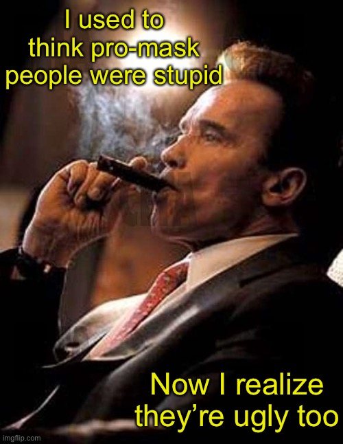 The truth about pro-maskers |  I used to think pro-mask people were stupid; Now I realize they're ugly too | image tagged in arnold cigar,covid-19,covidiots | made w/ Imgflip meme maker