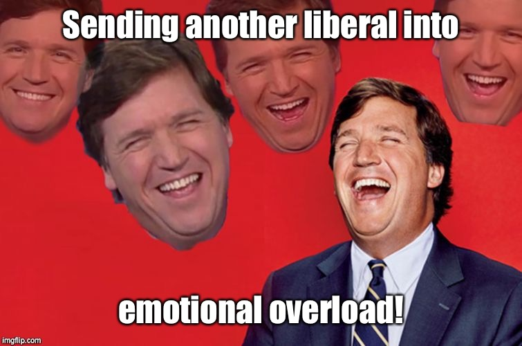 Tucker laughs at libs | Sending another liberal into emotional overload! | image tagged in tucker laughs at libs | made w/ Imgflip meme maker