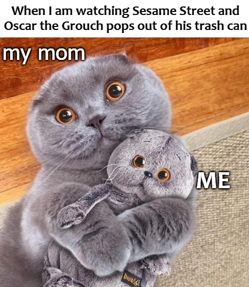 When I am watching Sesame Street and Oscar the Grouch pops out of his trash can; my mom; ME | image tagged in sesame street | made w/ Imgflip meme maker
