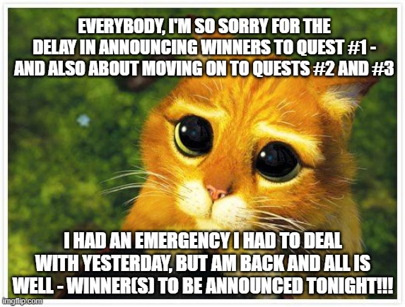 REALLY Sorry for the Delay - Please Don't Leave Me - Give Me Another Chance!  ...  That's What She Said... |  EVERYBODY, I'M SO SORRY FOR THE DELAY IN ANNOUNCING WINNERS TO QUEST #1 - AND ALSO ABOUT MOVING ON TO QUESTS #2 AND #3; I HAD AN EMERGENCY I HAD TO DEAL WITH YESTERDAY, BUT AM BACK AND ALL IS WELL - WINNER(S) TO BE ANNOUNCED TONIGHT!!! | image tagged in sorry kitty | made w/ Imgflip meme maker