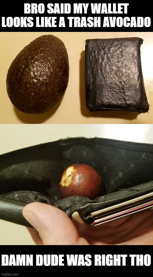 bad avocado: no green |  BRO SAID MY WALLET LOOKS LIKE A TRASH AVOCADO; DAMN DUDE WAS RIGHT THO | image tagged in avocado,wallet,damn,bro,broke,poor | made w/ Imgflip meme maker