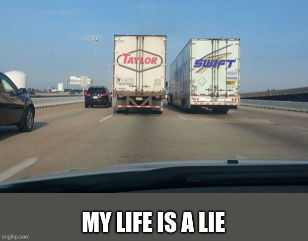 MY LIFE IS A LIE | image tagged in coincidence | made w/ Imgflip meme maker