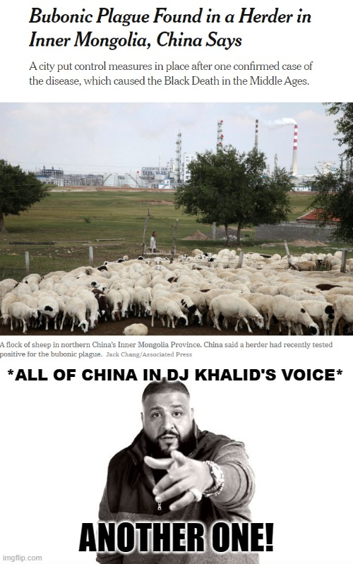 AnOtHer OnE!! |  *ALL OF CHINA IN DJ KHALID'S VOICE*; ANOTHER ONE! | image tagged in dj khaled another one,made in china,china virus | made w/ Imgflip meme maker