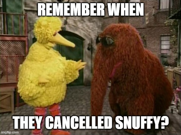 Remember when... |  REMEMBER WHEN; THEY CANCELLED SNUFFY? | image tagged in memes,big bird and snuffy | made w/ Imgflip meme maker