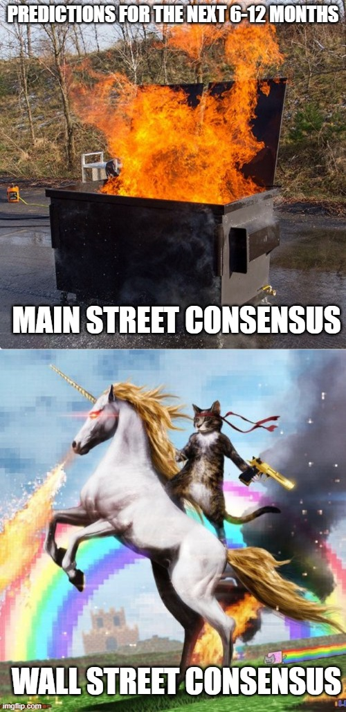 Same planet, different worlds |  PREDICTIONS FOR THE NEXT 6-12 MONTHS; MAIN STREET CONSENSUS; WALL STREET CONSENSUS | image tagged in memes,welcome to the internets,dumpster fire | made w/ Imgflip meme maker