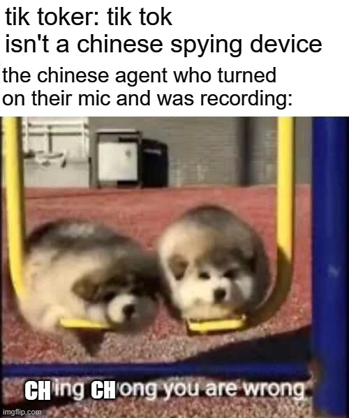tik tok is a chinese spying tool |  tik toker: tik tok isn't a chinese spying device; the chinese agent who turned on their mic and was recording:; CH; CH | image tagged in swing swong you are wrong,tik tok,china,lol,memes | made w/ Imgflip meme maker