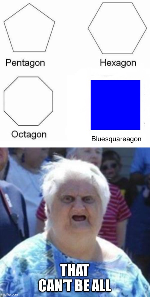 Blue square ? |  Bluesquareagon; THAT CAN'T BE ALL | image tagged in wat lady,memes,pentagon hexagon octagon | made w/ Imgflip meme maker