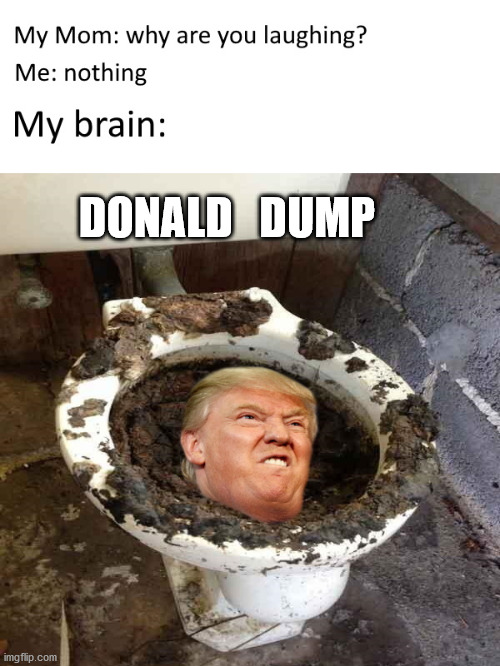 The Trump Dump |  DONALD   DUMP | image tagged in memes,trump,toilet,president,dump,funny | made w/ Imgflip meme maker