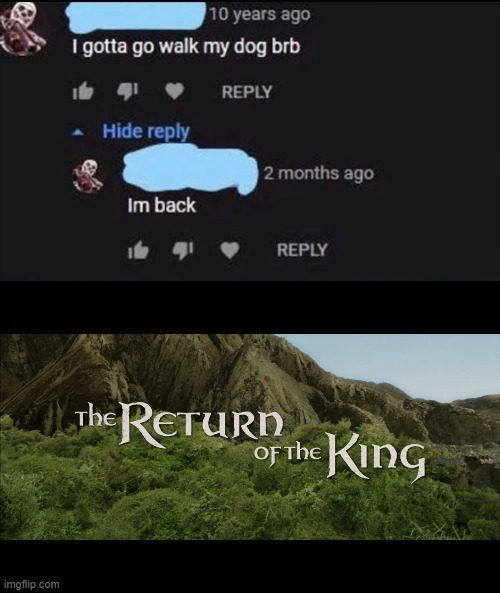 10 Years! | image tagged in return of the king,memes,funny,dogs,walking | made w/ Imgflip meme maker