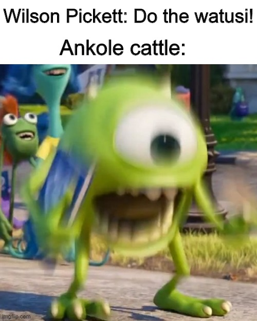 Land of a Thousand Dances meme |  Wilson Pickett: Do the watusi! Ankole cattle: | image tagged in mike wazowski,memes,wilson pickett,cows,song lyrics | made w/ Imgflip meme maker