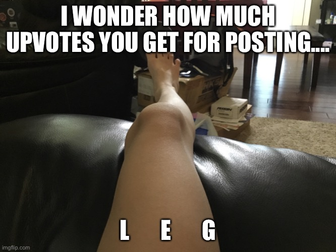 I WONDER HOW MUCH UPVOTES YOU GET FOR POSTING.... L       E       G | image tagged in legs | made w/ Imgflip meme maker