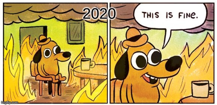 This Is Fine |  2020 | image tagged in memes,this is fine | made w/ Imgflip meme maker