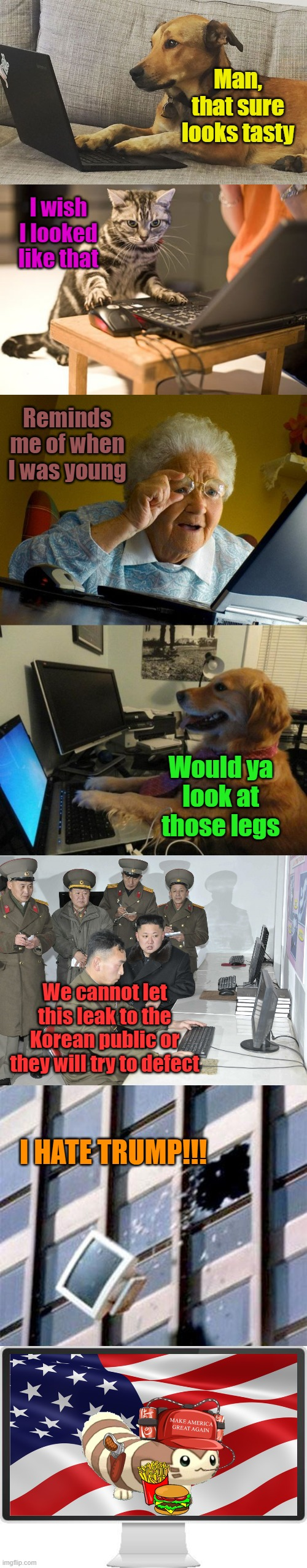 I love America |  Man, that sure looks tasty; I wish I looked like that; Reminds me of when I was young; Would ya look at those legs; We cannot let this leak to the Korean public or they will try to defect; I HATE TRUMP!!! | image tagged in memes,grandma finds the internet,computer out window,dog behind a computer,cat computer,computer screen | made w/ Imgflip meme maker