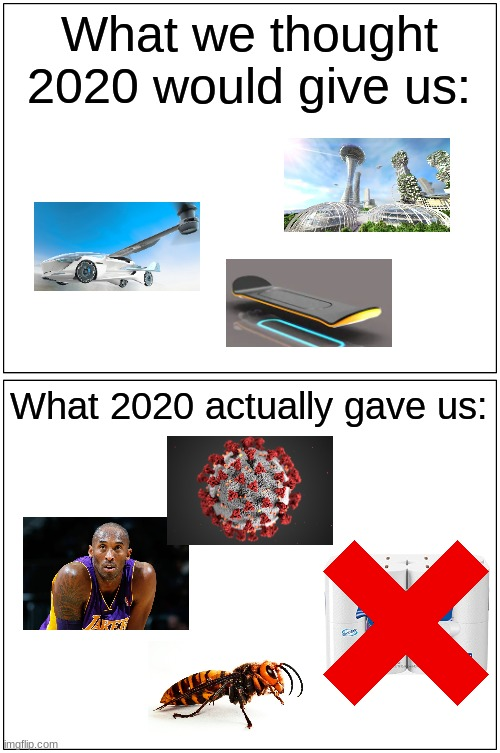 2020 is the worst |  What we thought 2020 would give us:; What 2020 actually gave us: | image tagged in memes,blank comic panel 1x2,2020,covid-19,kobe bryant,future | made w/ Imgflip meme maker