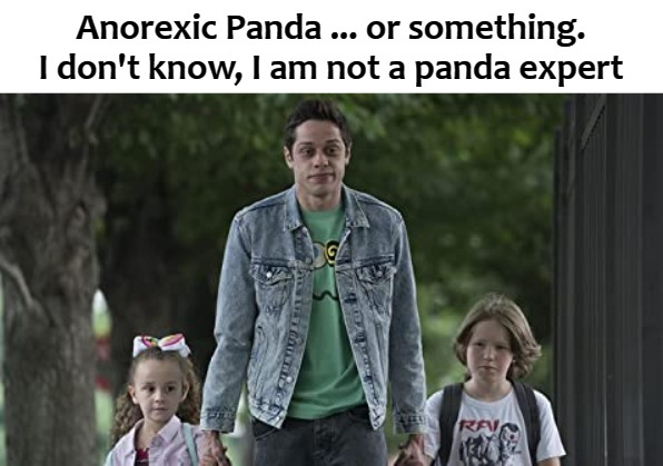 Anorexic Panda ... or something. I don't know, I am not a panda expert | image tagged in king | made w/ Imgflip meme maker