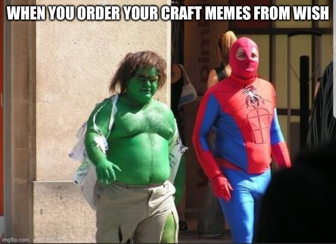 fake spiderman |  WHEN YOU ORDER YOUR CRAFT MEMES FROM WISH | image tagged in fake spiderman | made w/ Imgflip meme maker