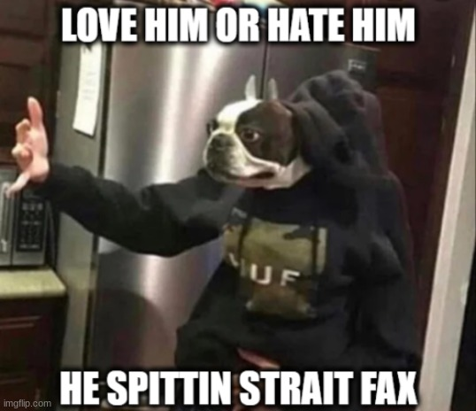 Love Him or hate him he spittin strait fax | image tagged in love him or hate him he spittin strait fax | made w/ Imgflip meme maker