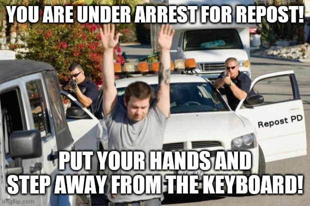 Repost Police |  YOU ARE UNDER ARREST FOR REPOST! PUT YOUR HANDS AND STEP AWAY FROM THE KEYBOARD! | image tagged in repost police | made w/ Imgflip meme maker