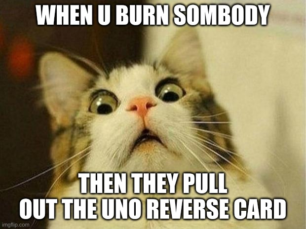 Scared Cat Meme |  WHEN U BURN SOMBODY; THEN THEY PULL OUT THE UNO REVERSE CARD | image tagged in memes,scared cat | made w/ Imgflip meme maker