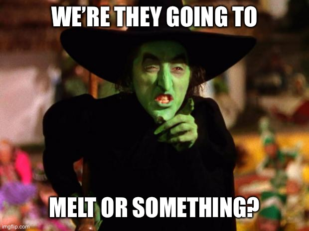 WE'RE THEY GOING TO MELT OR SOMETHING? | image tagged in wicked witch | made w/ Imgflip meme maker
