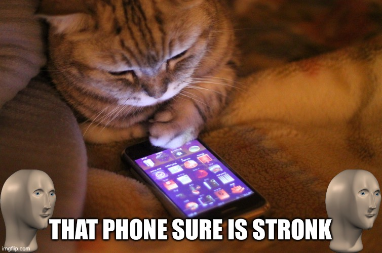 Cat with mobile phone | THAT PHONE SURE IS STRONK | image tagged in cat with mobile phone | made w/ Imgflip meme maker