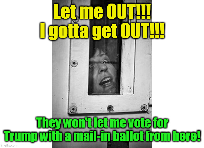 Let Me Out! Mail In Ballot Voter |  Let me OUT!!! I gotta get OUT!!! They won't let me vote for Trump with a mail-in ballot from here! | image tagged in voter,ballot,mail,lunatic,trump,election | made w/ Imgflip meme maker